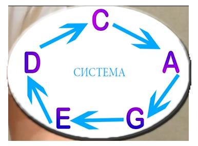 система CAGED это такой замкнутый круг у которого нет начала и конца, поэтому начинаться они могут с любой формы