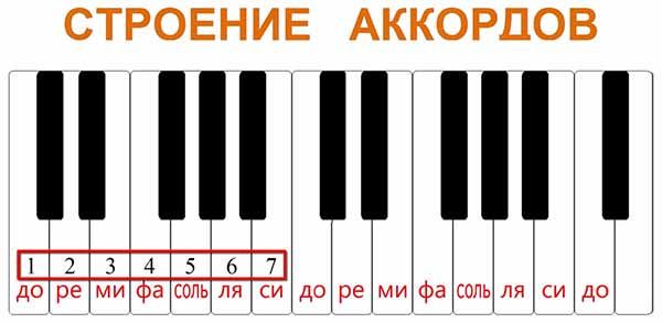 Ступени и нумерация нот